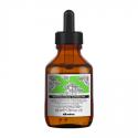 Davines Renewing superaktyvas plaukams, 100 ml